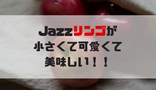 【レビュー】ニュージーランドの ジャズリンゴが小さくて可愛くて美味しい【jazzりんご】
