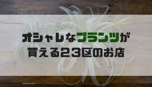 【東京】おしゃれな植物が買える都内23区のおすすめショップ31選(観葉植物・多肉植物・エアプランツ)