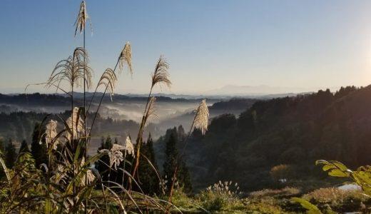 星峠の棚田・雲海を見て、へぎ蕎麦を食べる【新潟県弾丸旅行】